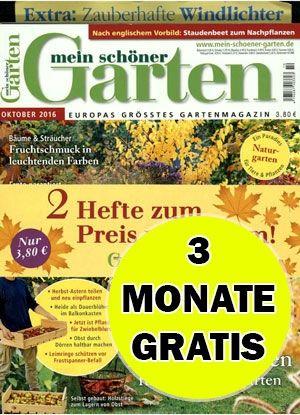 Mein Schoner Garten Zeitschrift Online Magazin Abo Shop Schweiz Magazin Zeitschriften Abo Gunstig Kaufen